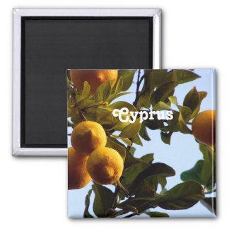 Cyprus Lemon Grove Square Magnet