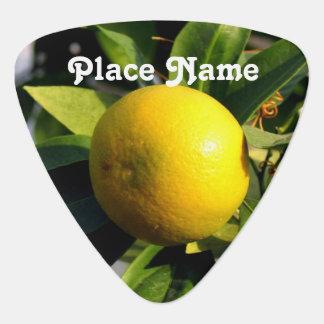 Cyprus Lemons Plectrum