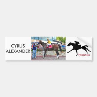 Cyrus Alexander-R.Bejarano Bumper Sticker