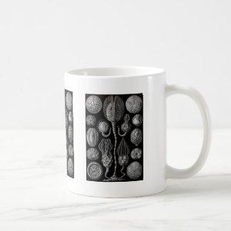 Cystoids Coffee Mug