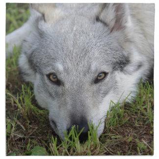 Czechoslovakian Wolfdog Napkin