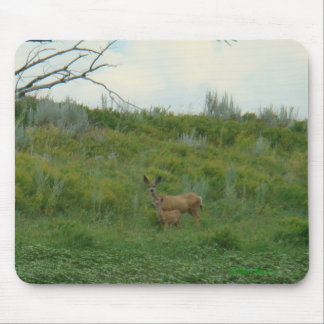 D0005 Mule Deer Doe and Fawn Mouse Pad