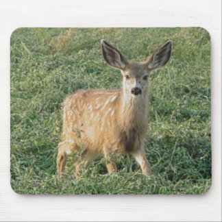 D0019 Mule Deer Fawn mouse pad