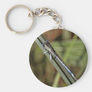 d19 key ring