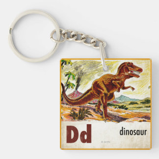 D is for Dinosaur Double-Sided Square Acrylic Key Ring