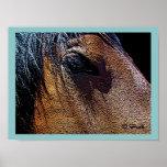 D Pratt Original_Gentle Eye Series_Nani Posters