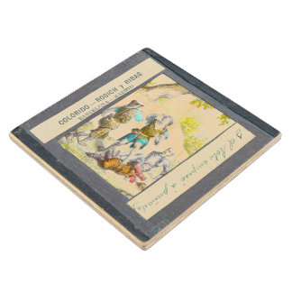 D. Quixote-I Magic lantern view Chapter XXIV Wood Coaster