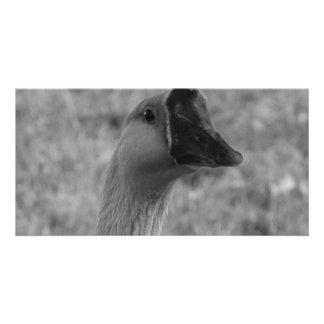 da goose custom photo card