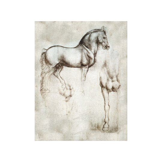 Da Vinci Horse Canvas Print