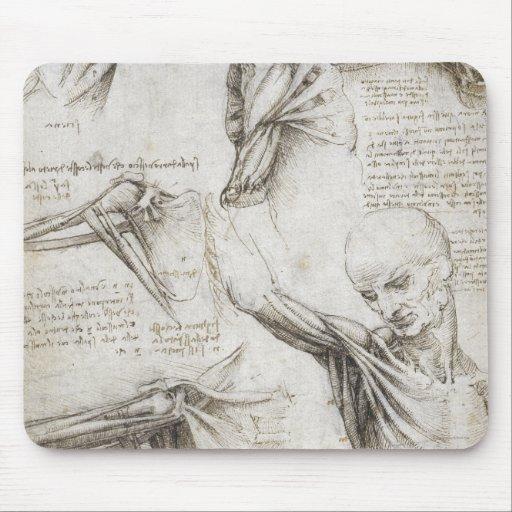 Da Vinci, Leonardo - Study of Anatomy Mousepads