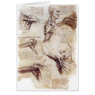 da Vinci -- Shoulder Sketch Card