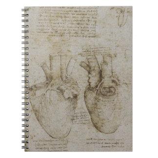 Da Vinci's Heart Anatomy Notebook