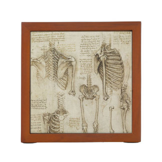 Da Vinci's Human Skeleton Anatomy Sketches Desk Organiser