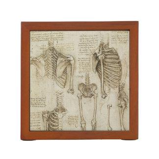 Da Vinci's Human Skeleton Anatomy Sketches Desk Organisers