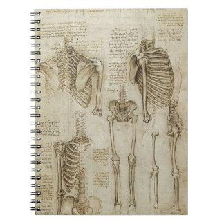 Da Vinci's Human Skeleton Anatomy Sketches Notebook