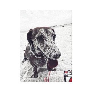 Dachshund at the Beach Canvas Print