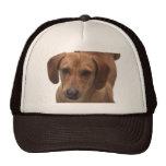 Dachshund Barking Machine Mesh Hat