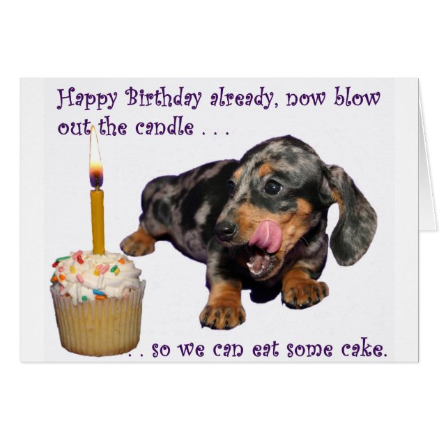 Dachshund Birthday Gifts - T-Shirts, Art, Posters & Other Gift ...