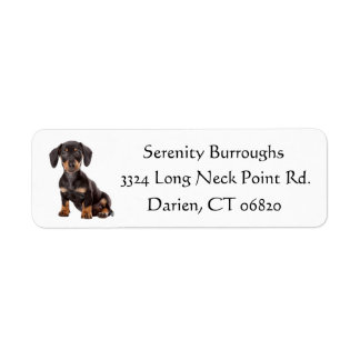 Dachshund Black And Brown Puppy Dog Personalized Return Address Label
