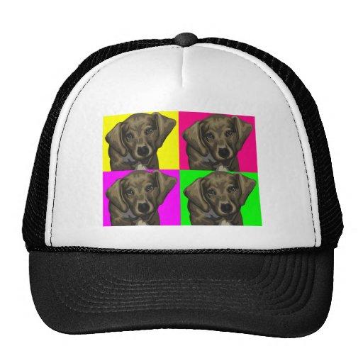 Dachshund Bright Dog Collage Mesh Hat