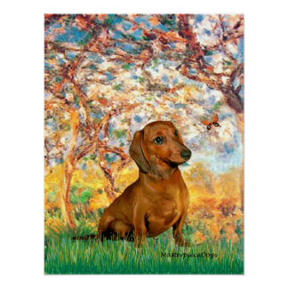 Dachshund (brown1) - Spring Poster