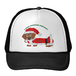 Dachshund Candy Cane Santa Cap