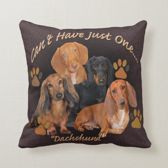 Dachshund Can't Have Just One Pillow