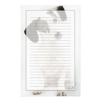 Dachshund/Chihuahua female puppy staring Customized Stationery