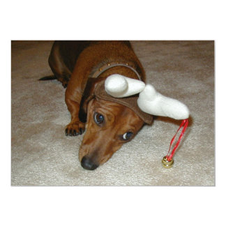 Dachshund Christmas Card - Reluctant Reindeer