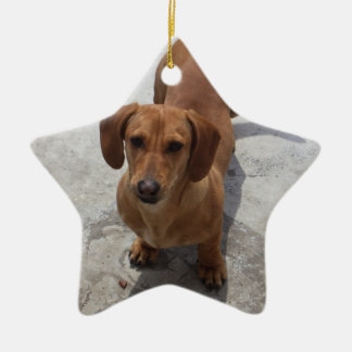 Dachshund Christmas Ornament Star Custom