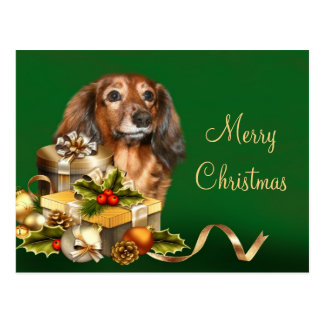 Dachshund Christmas Postcard