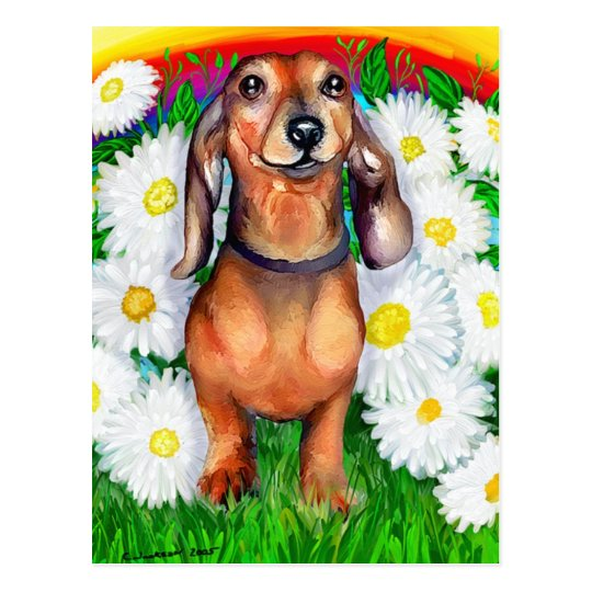 Dachshund Daisy Patch Postcard