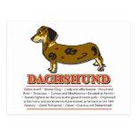 Dachshund Design Post Cards