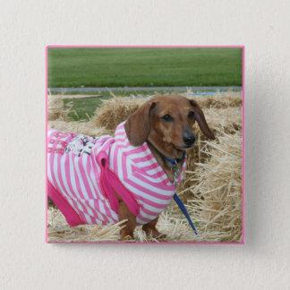 Dachshund dog 15 cm square badge