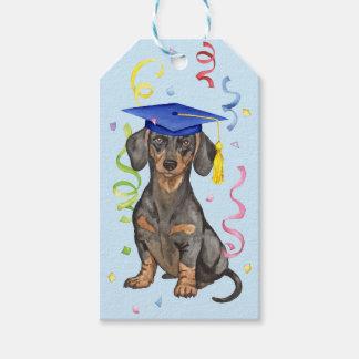 Dachshund Graduate