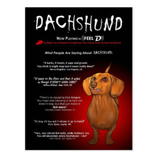 Dachshund in 3D Postcard