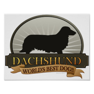 Dachshund [Long-haired] Poster