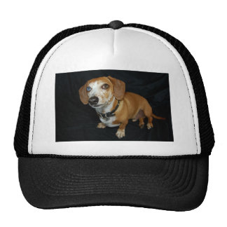Dachshund Love Trucker Hat