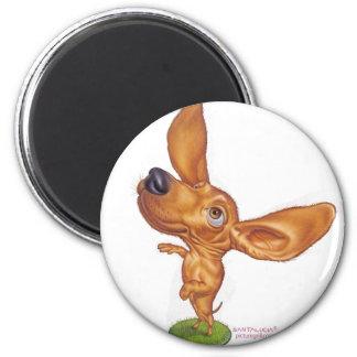 dachshund magnet