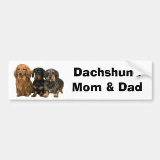 Dachshund Mom & Dad Bumper Sticker