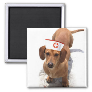 Dachshund nurse magnet