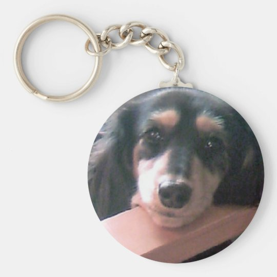 Dachshund of cute black cream! basic round button key ring