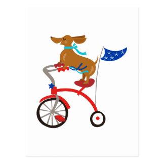 Dachshund On Bike Postcard