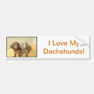 Dachshund Puppies Bumper Sticker