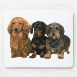 Dachshund Puppies Mousepad