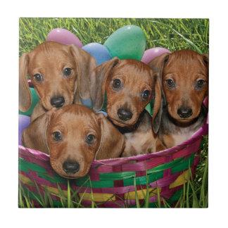 Dachshund Puppies Tile