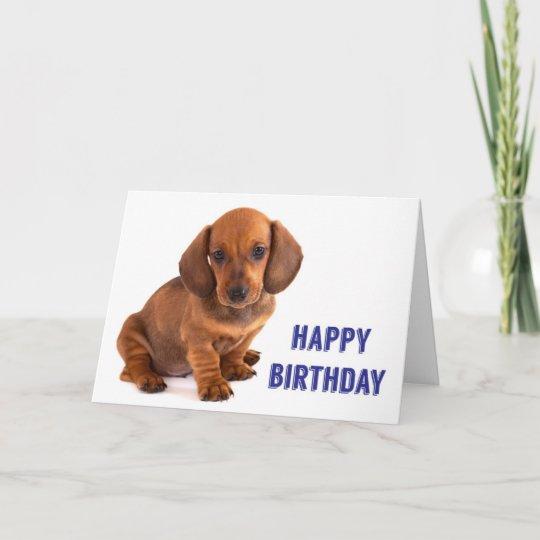 Dachshund Puppy Birthday Card Zazzle