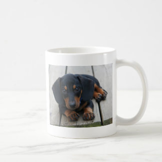 Dachshund Puppy Black Coffee Mug