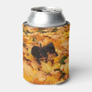 Dachshund puppy can cooler