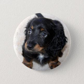 Dachshund puppy dog cute beautiful photo, gift 6 cm round badge